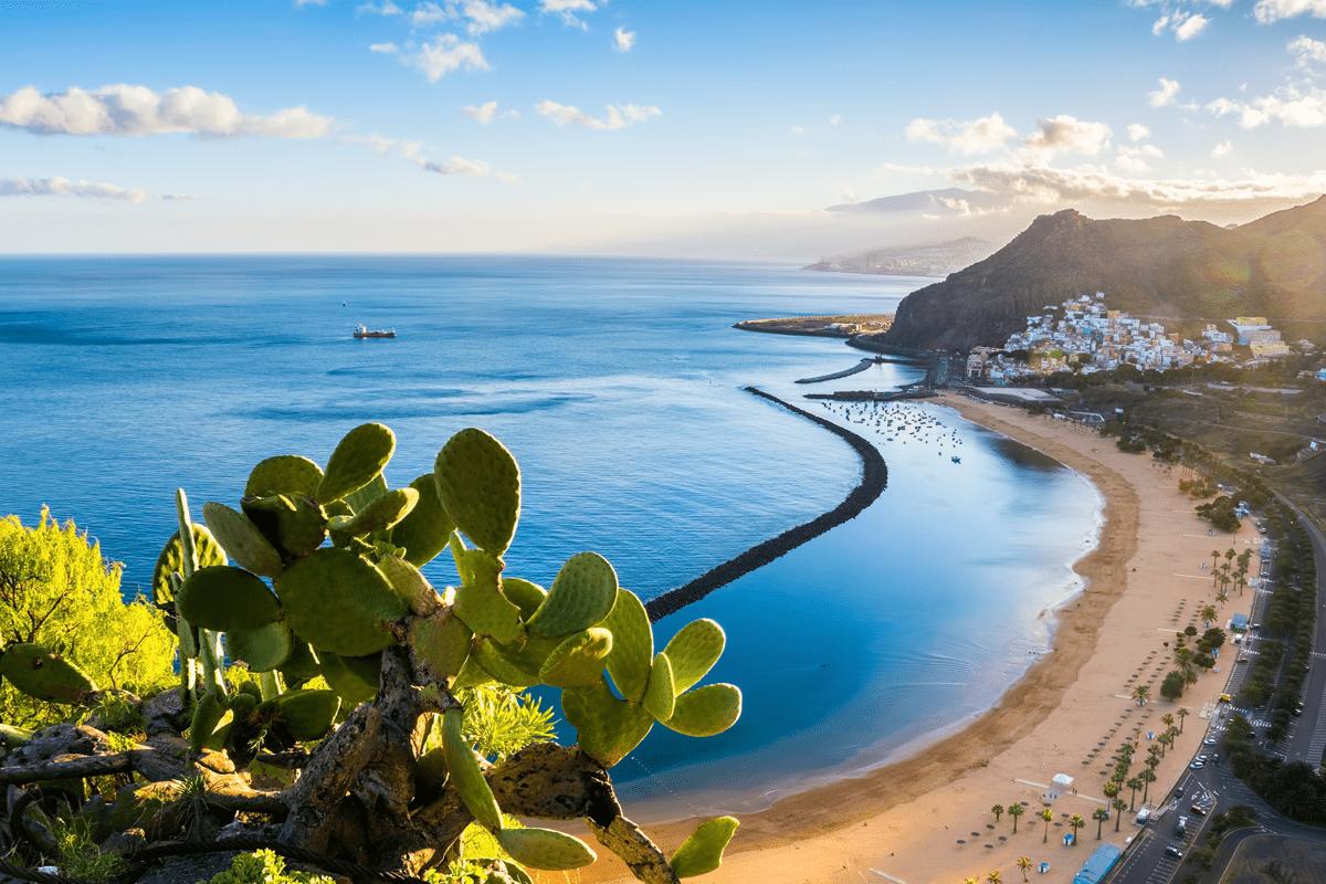 Canaries : une île pour chacun !